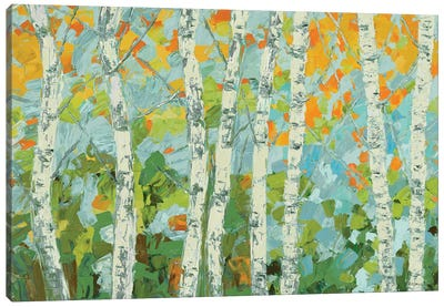 Autumn Dancing Birch Tree Canvas Art Print