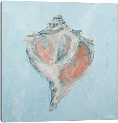 Conch & Scallop I Canvas Art Print