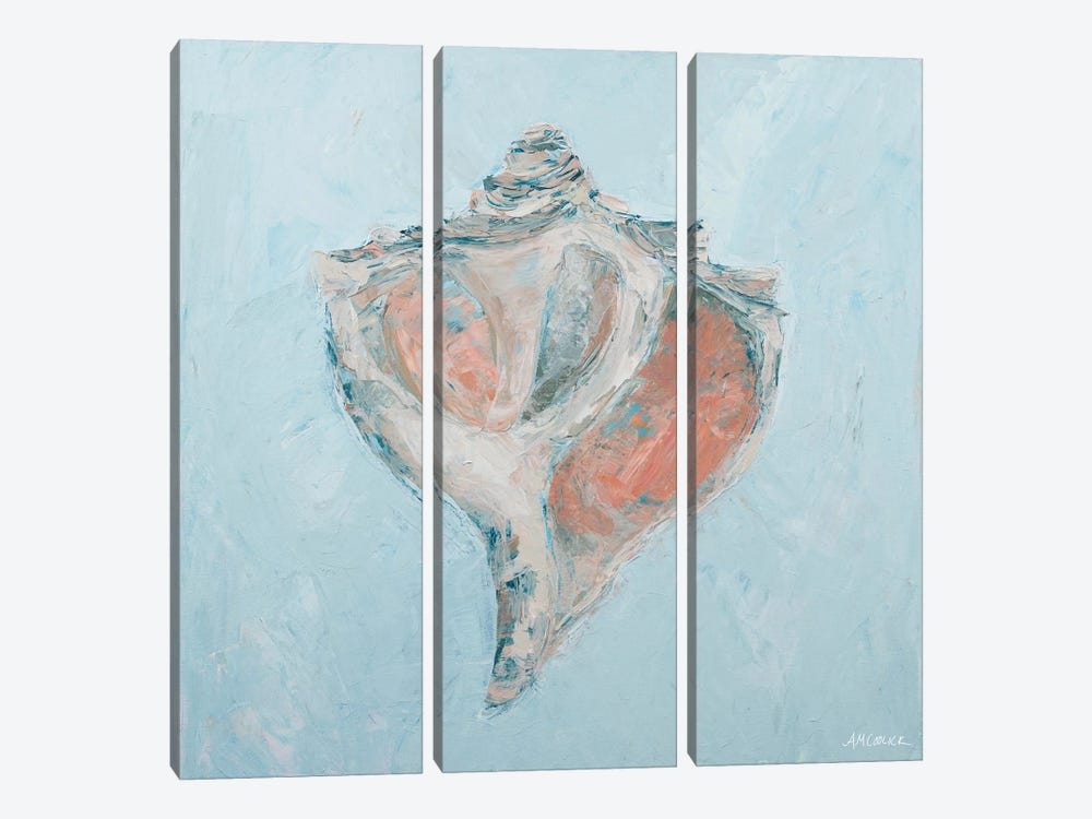 Conch & Scallop I by Ann Marie Coolick 3-piece Canvas Art Print