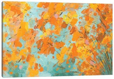 South Inge Maple Canvas Art Print