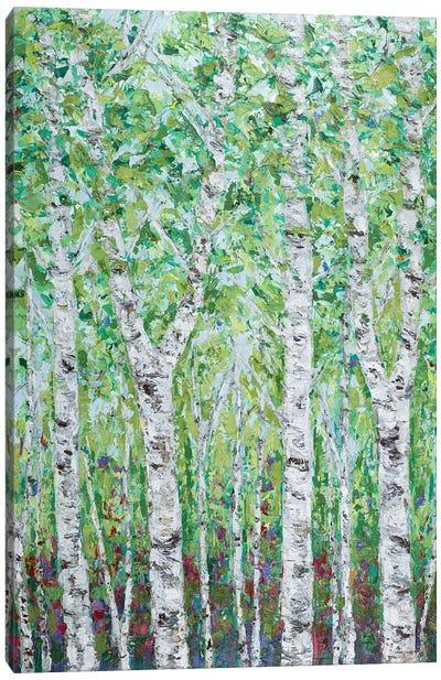 Green Birchwood II Canvas Art Print