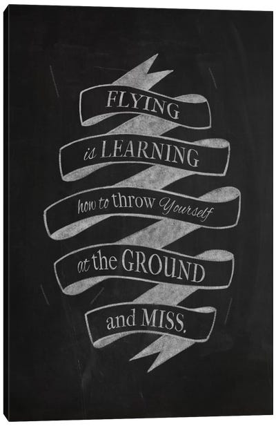 Flying Is Learning Canvas Art Print