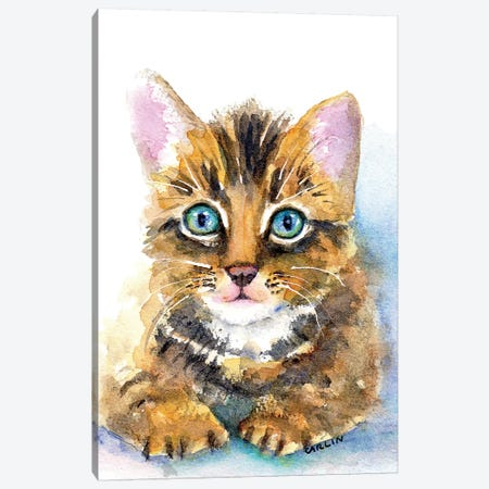 Sweet Baby Kitten Canvas Print #CLN37} by Carlin Canvas Art Print