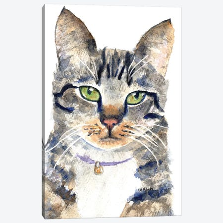 Sweet Face Gray Tabby Canvas Print #CLN38} by Carlin Canvas Wall Art