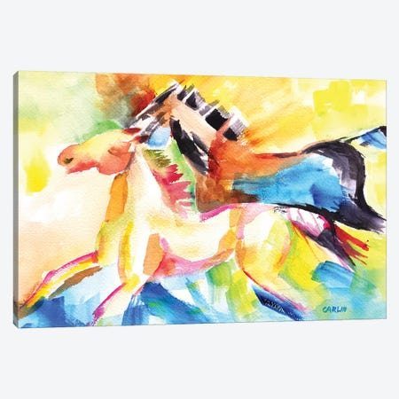 Freedom Canvas Print #CLN64} by Carlin Canvas Wall Art