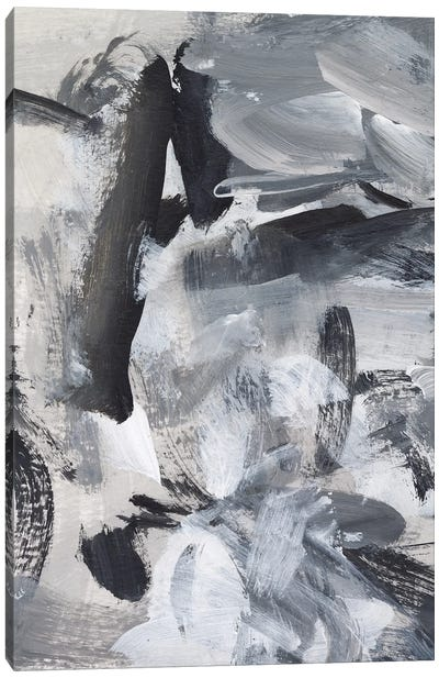 Black & White Mix III Canvas Art Print