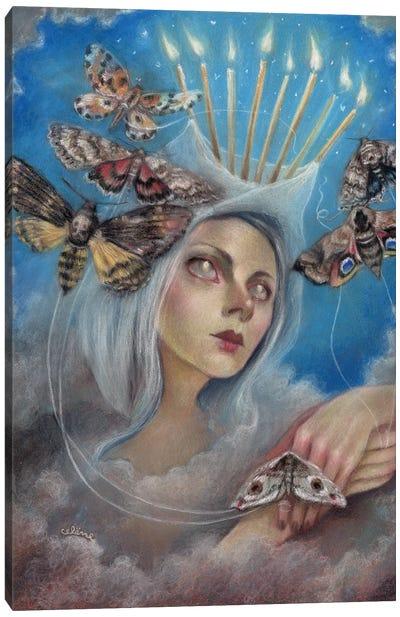 Like A Moth To The Flame Canvas Art Print