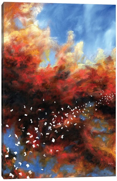 Explosion In The Sky Canvas Art Print