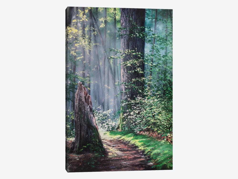 Through A Forest Wilderness by Christopher Lyter 1-piece Canvas Wall Art