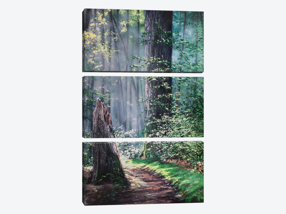 Through A Forest Wilderness by Christopher Lyter 3-piece Canvas Wall Art