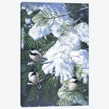 Winter Chickadees Canvas Print #CLT40} by Christopher Lyter Canvas Print
