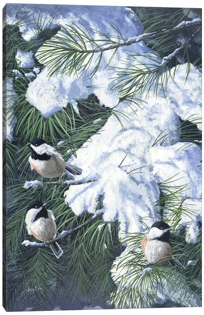 Winter Chickadees Canvas Art Print