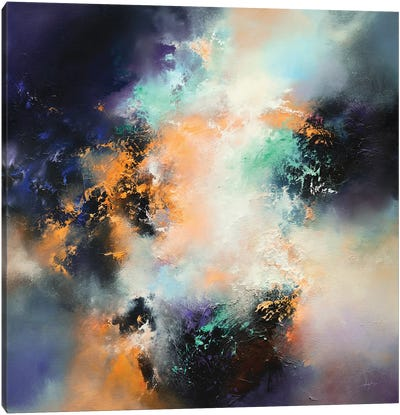 A Stubbornly Persistent Illusion Canvas Art Print
