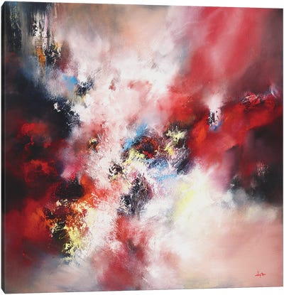 An Infinite Storm Of Beauty Canvas Art Print