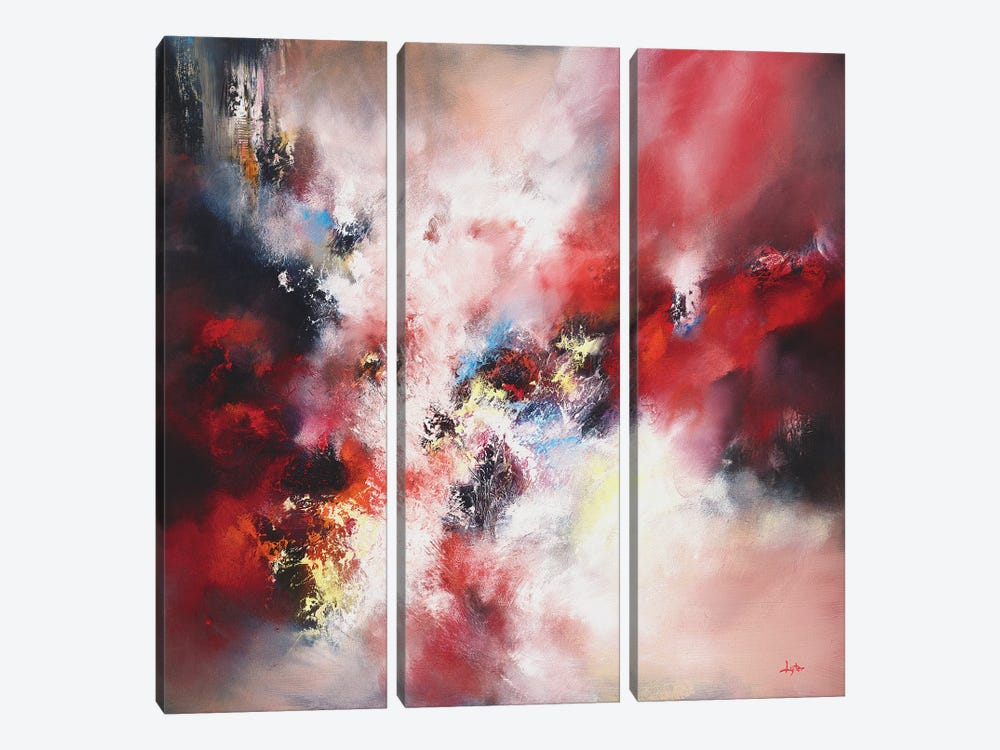 An Infinite Storm Of Beauty by Christopher Lyter 3-piece Canvas Print