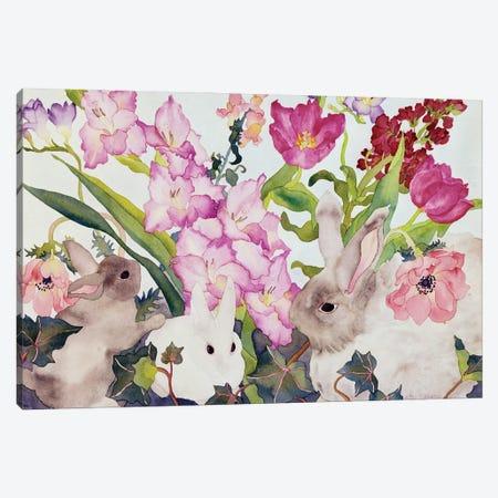 Three Bunnies Canvas Print #CLU150} by Carissa Luminess Art Print
