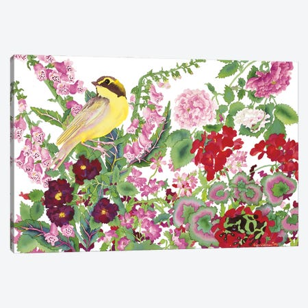 Warbler With Frog Canvas Print #CLU165} by Carissa Luminess Canvas Art Print