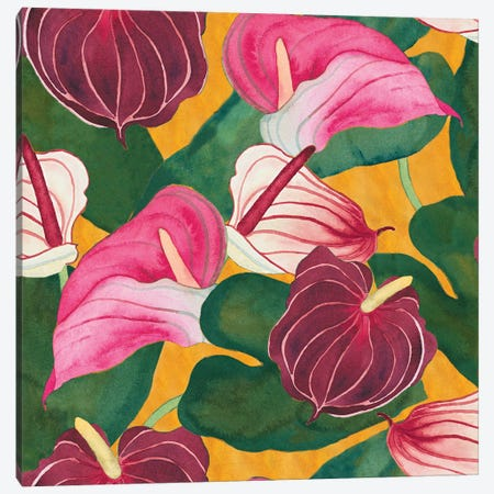Heavenly Divine- Anthuriums Canvas Print #CLU69} by Carissa Luminess Canvas Wall Art