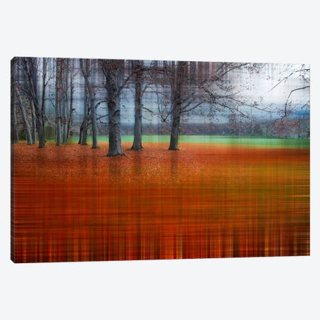 Abstract Autumn Canvas Print #CMA1} by Hannes Cmarits Canvas Print
