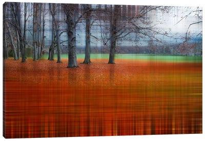 Abstract Autumn Canvas Art Print