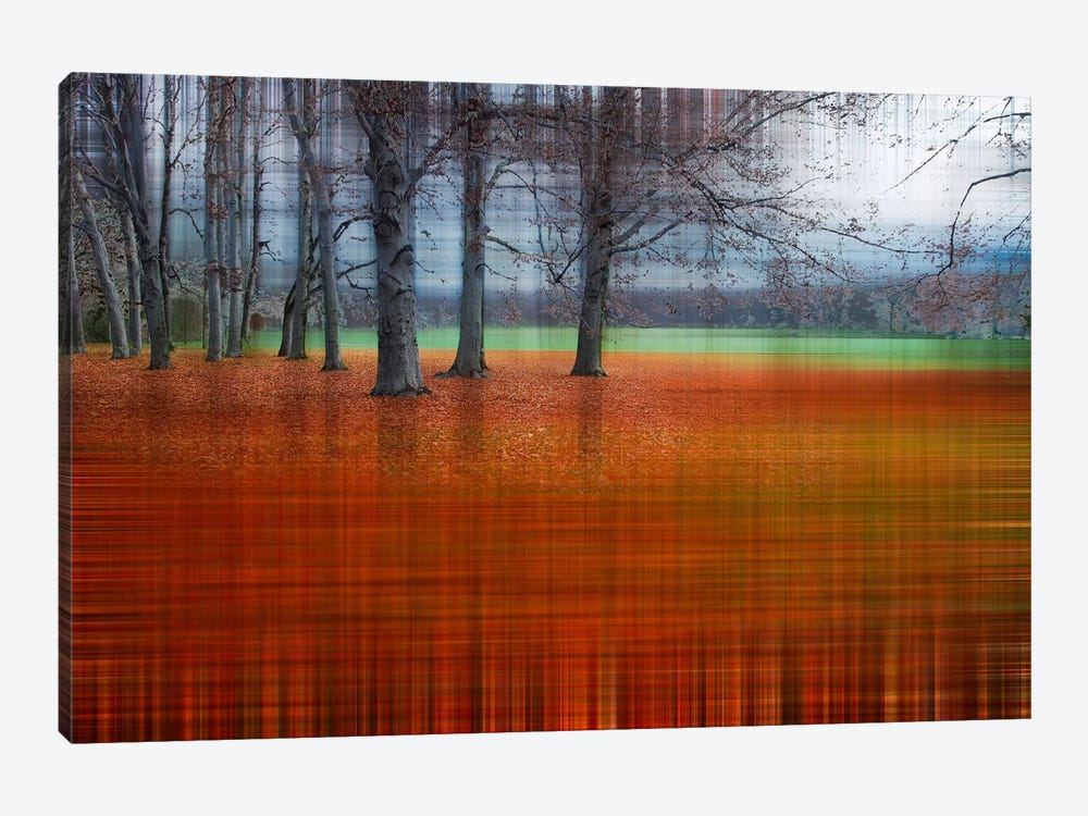 Abstract Autumn by Hannes Cmarits 1-piece Canvas Art
