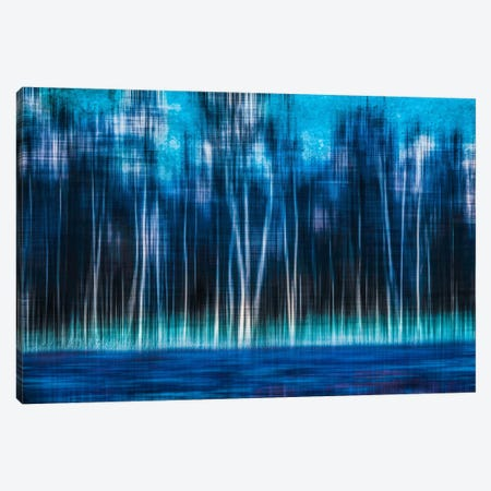 Mystic Forest Canvas Print #CMA5} by Hannes Cmarits Canvas Art