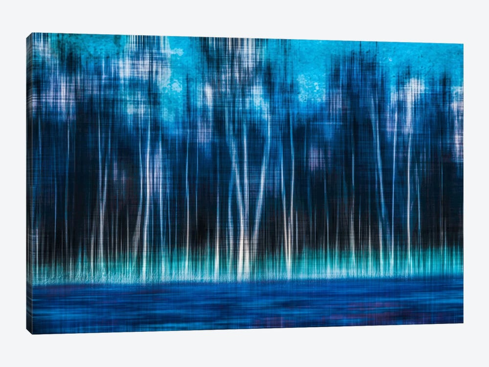 Mystic Forest by Hannes Cmarits 1-piece Canvas Art