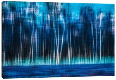 Mystic Forest Canvas Art Print