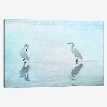 White Cranes Canvas Print #CMA6} by Hannes Cmarits Canvas Wall Art