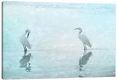 White Cranes Canvas Art Print