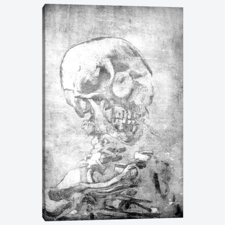 Skull of a Skeleton VII Canvas Print #CML122} by 5by5collective Canvas Print