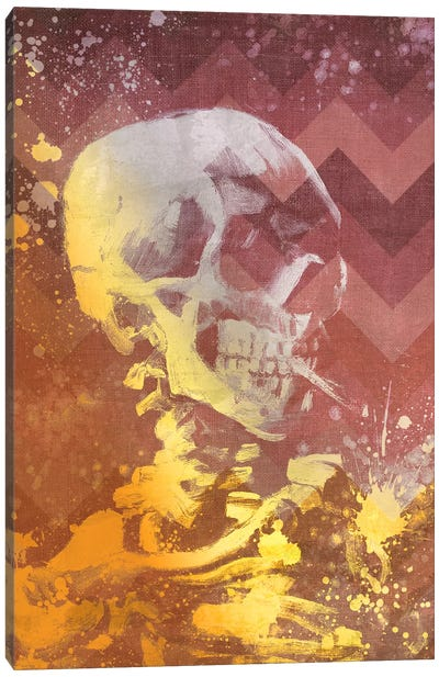 Skull of a Skeleton IX Canvas Art Print