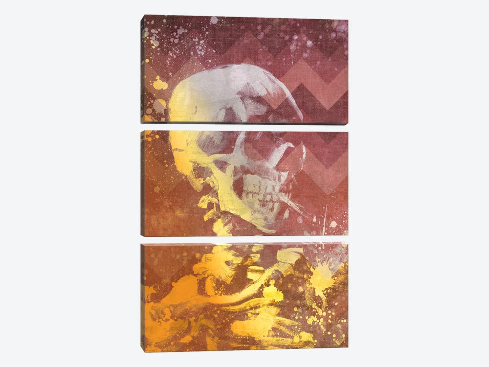 Skull of a Skeleton IX by 5by5collective 3-piece Canvas Artwork