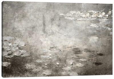 Waterlilies IV Canvas Art Print