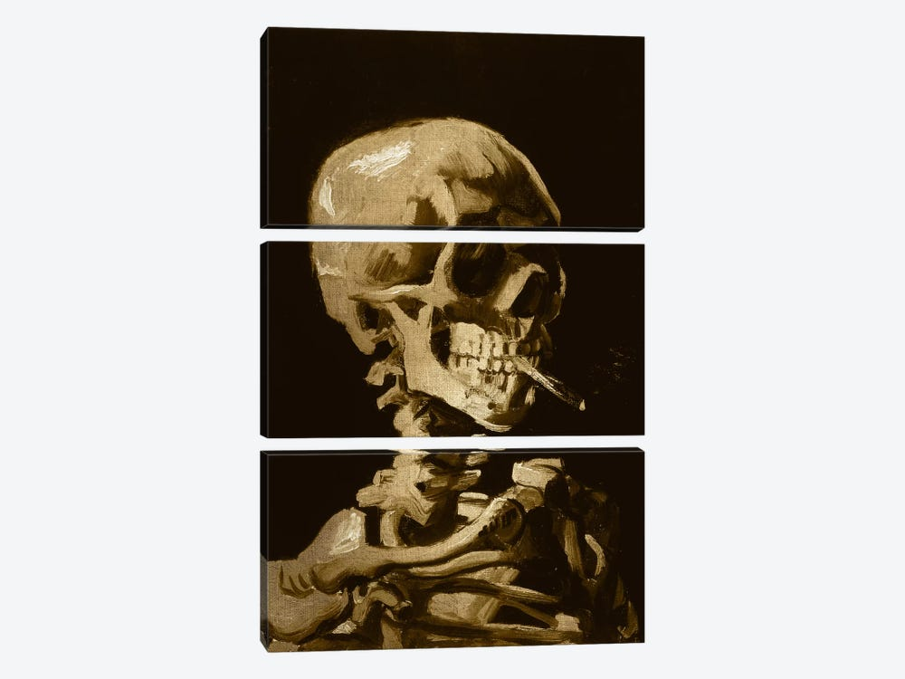 Skull of a Skeleton I by 5by5collective 3-piece Canvas Art