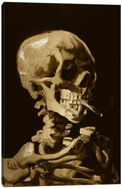 Skull of a Skeleton I Canvas Art Print
