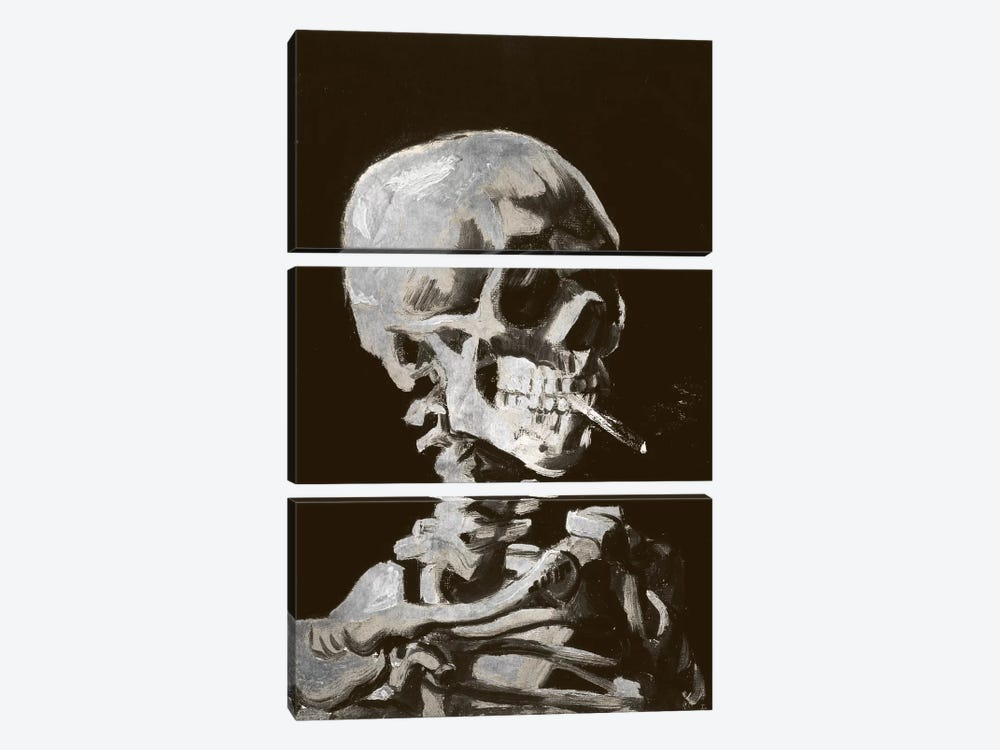 Skull of a Skeleton IV by 5by5collective 3-piece Canvas Artwork