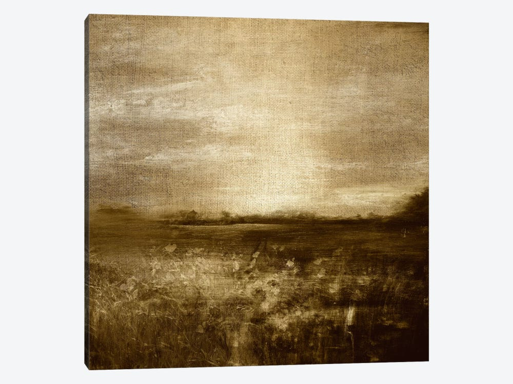 Meadow I by 5by5collective 1-piece Canvas Artwork