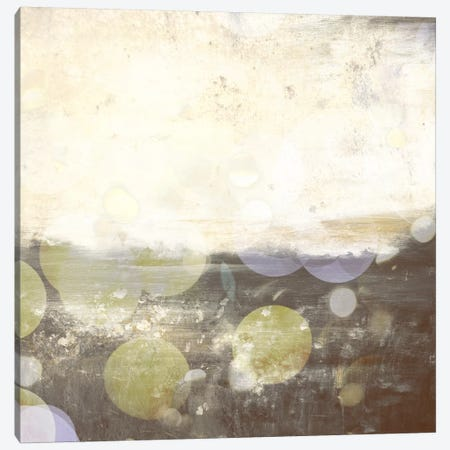 Meadow III Canvas Print #CML70} by 5by5collective Canvas Art Print