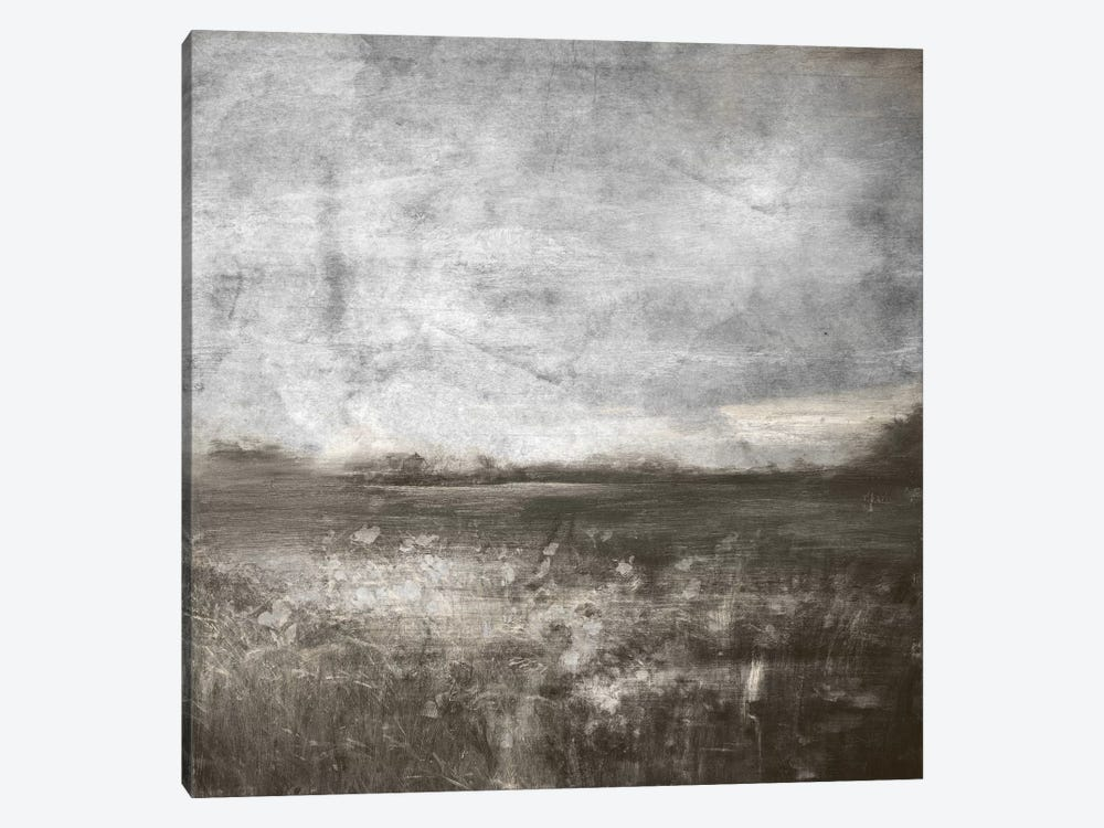 Meadow IV by 5by5collective 1-piece Canvas Artwork