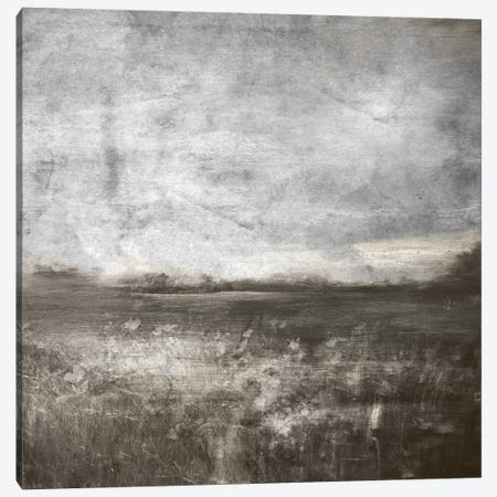 Meadow IV Canvas Print #CML71} by 5by5collective Canvas Print