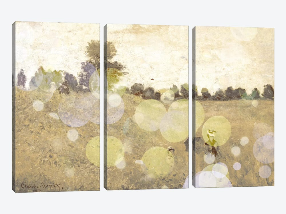 Wild Poppies III by 5by5collective 3-piece Canvas Artwork
