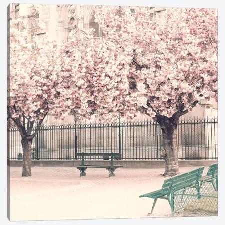 Paris Cherries Canvas Print #CMN105} by Caroline Mint Canvas Print
