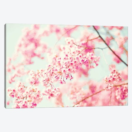 Pink Cherries Canvas Print #CMN127} by Caroline Mint Art Print