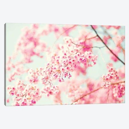 Pink Cherries Canvas Print #CMN127} by Caroline Mint Art Print