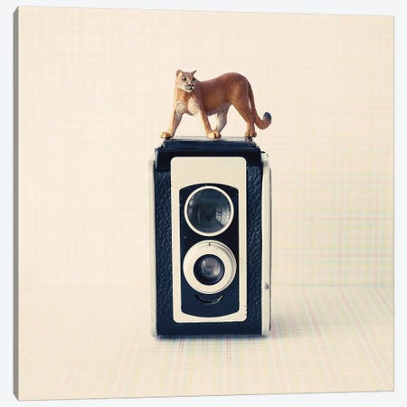 Reflex Camera Canvas Print #CMN135} by Caroline Mint Canvas Artwork