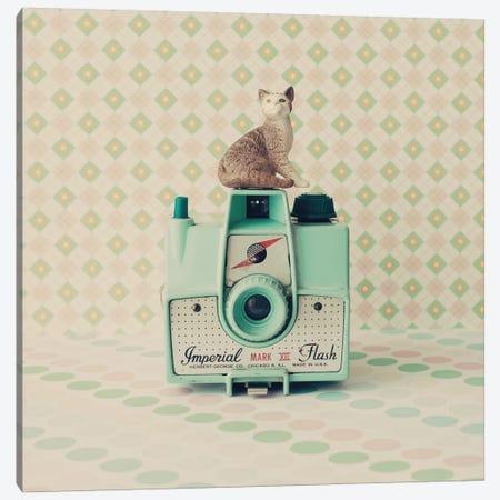 The Cat And The Camera Canvas Print #CMN171} by Caroline Mint Art Print