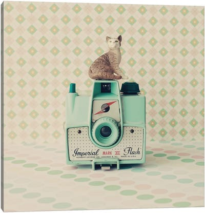 The Cat And The Camera Canvas Art Print