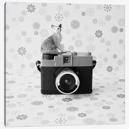The Cat And The Little Camera Canvas Print #CMN172} by Caroline Mint Canvas Art Print