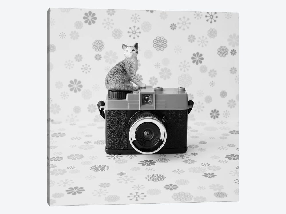 The Cat And The Little Camera by Caroline Mint 1-piece Art Print